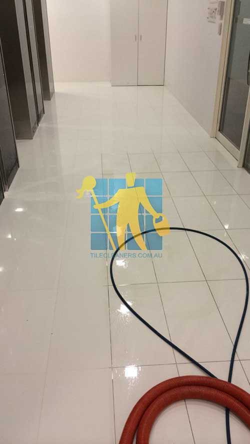 TILE CLEANERS SYDNEY MELBOURNE PERTH BRISBANE ADELAIDE - Clean and seal grout lines