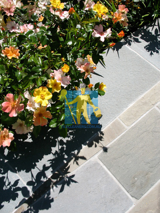 Sunshine Coast bluestone tiles outdoor traditional landscape flowers