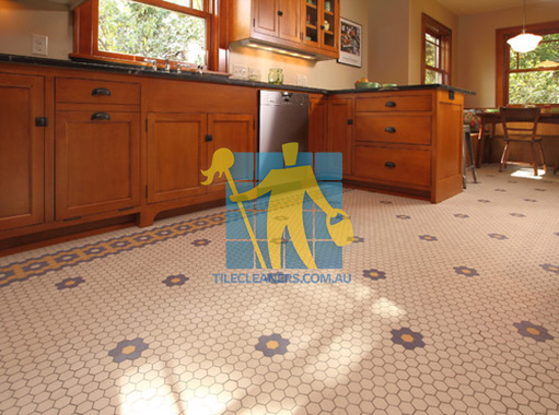 traditional kitchen with porcelain floor mosaic tiles with unglazed finish