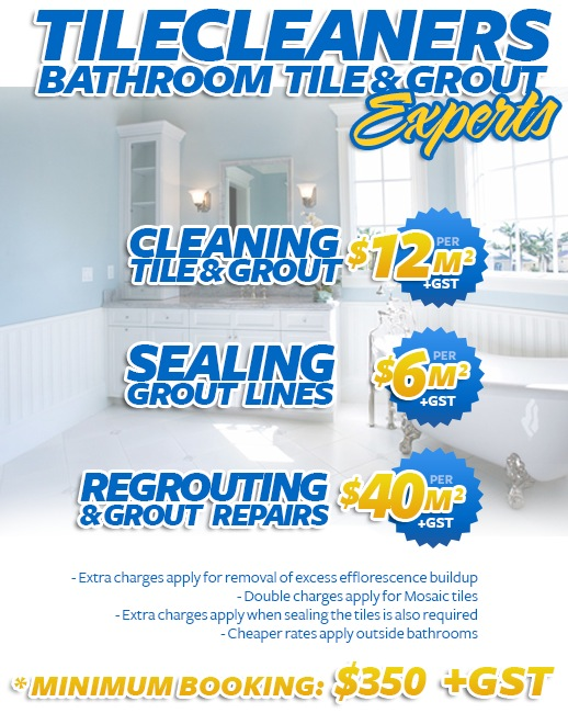 bathroom tile cleaning sealing regrouting