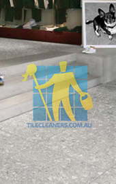 terrazzo tiles indoors grey contemporary furnished Canberra