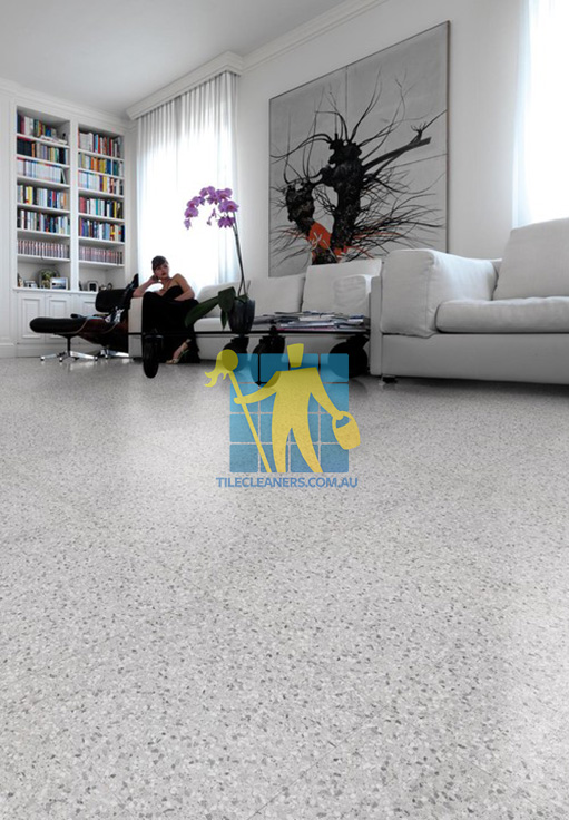 Terrazzo Sealing Perth Tile Cleaners