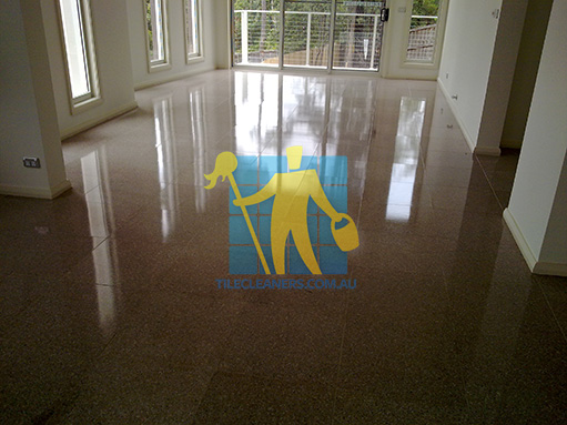 terrazzo tiles large empty room after cleaning shiny shadow Adelaide